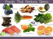 foodsstress