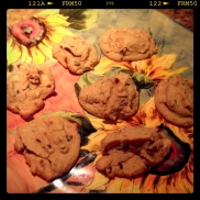 Chickpea Chocolate Chip Cookies